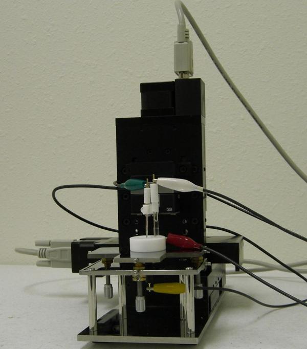SECM cell holder